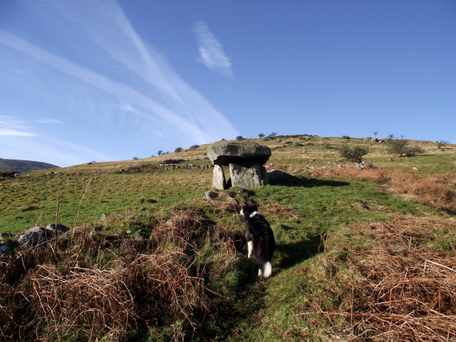 'Mist' investigates the Maen y Bardd tomb