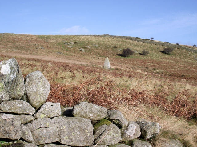 Another view of the stone – the bracken makes the name 'Cau Coch' (Red Enclosure) quite accurate