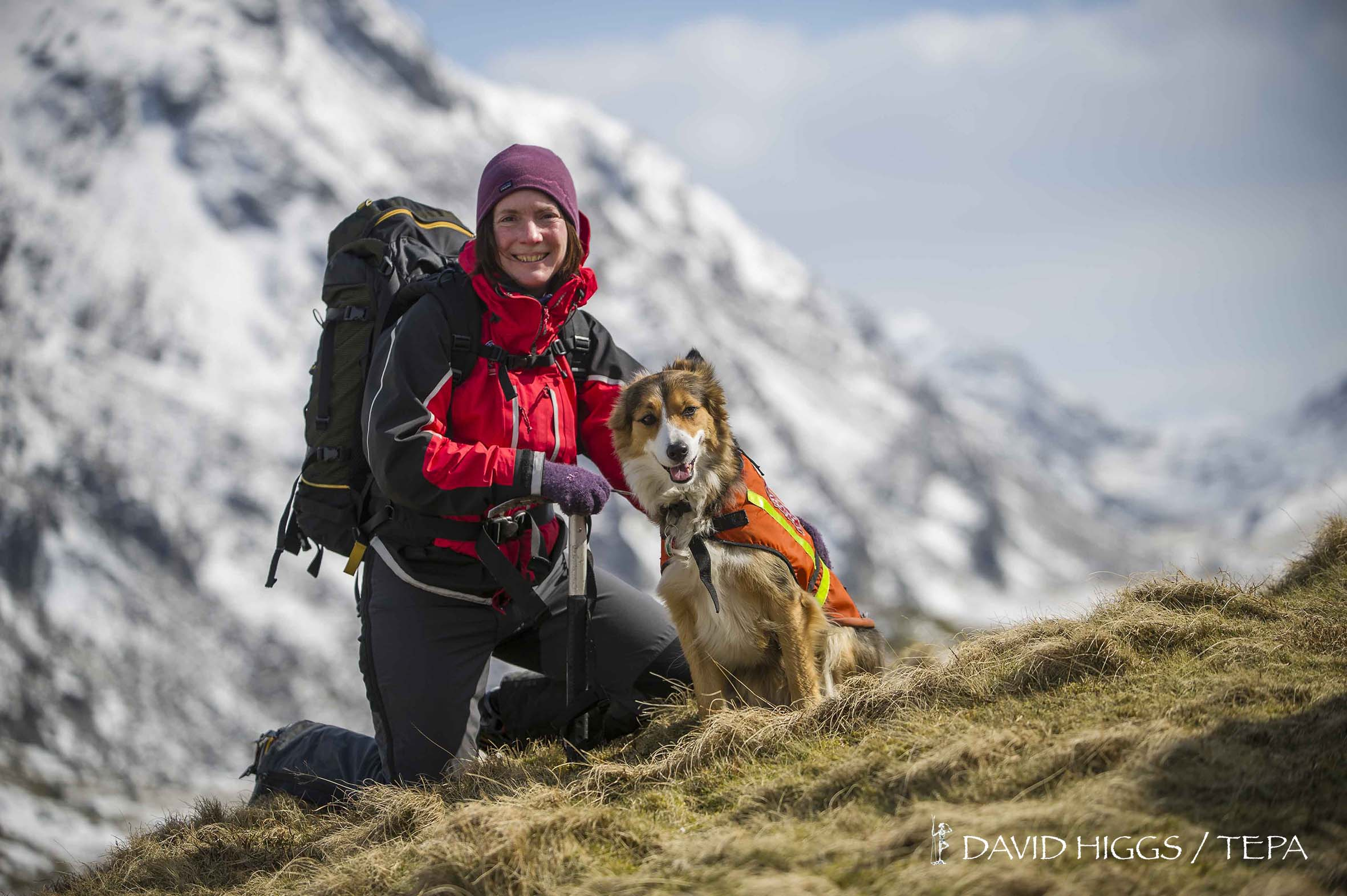 Mountain Rescue Dogs Wales