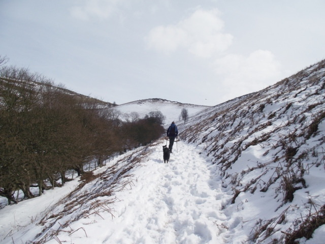…. but most of it on the path!