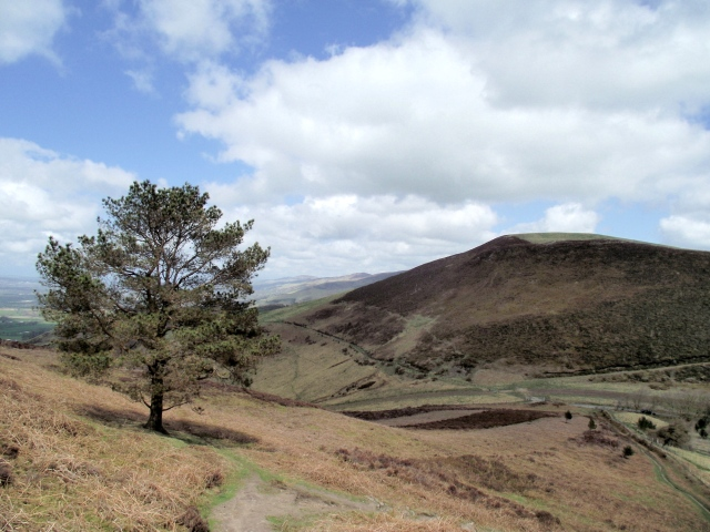 Looking north from Moel y Plas – typical Clwydian country