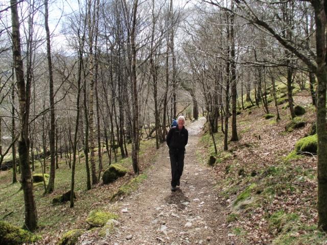 The start of the Watkin Path from Nantgwynant