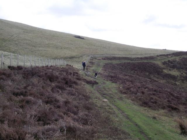The Offa's Dyke Path below Moel y Plas