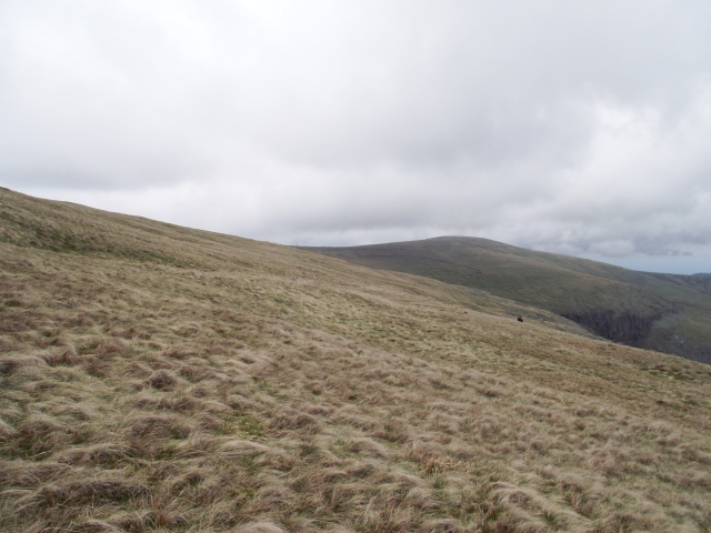 The grassy slopes below the summit of Foel Grach