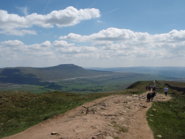 On the descent from Whernside, with Ingleborough waiting in the distance