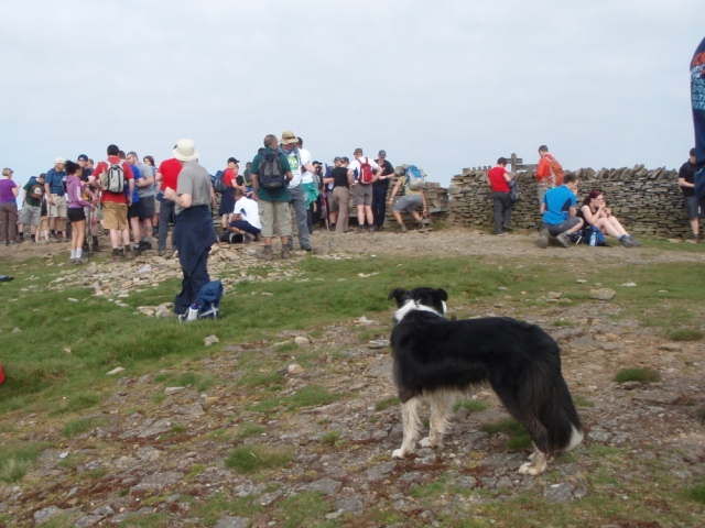 A busy day at the top, with 'Mist' still keeping an eye on things