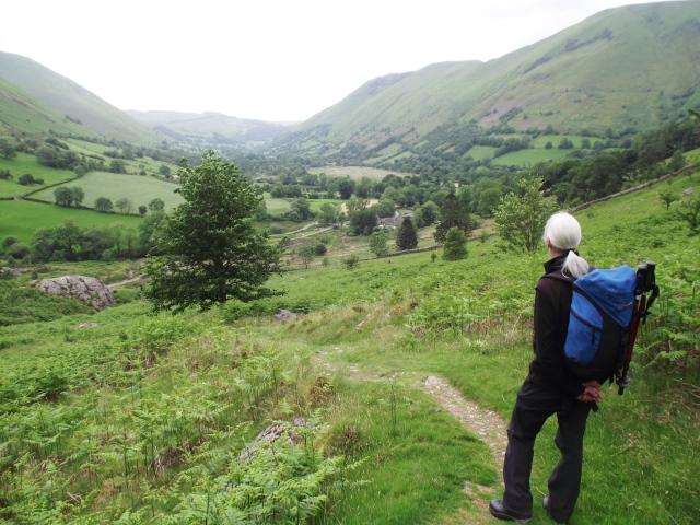 Looking back down Cwm Cywarch