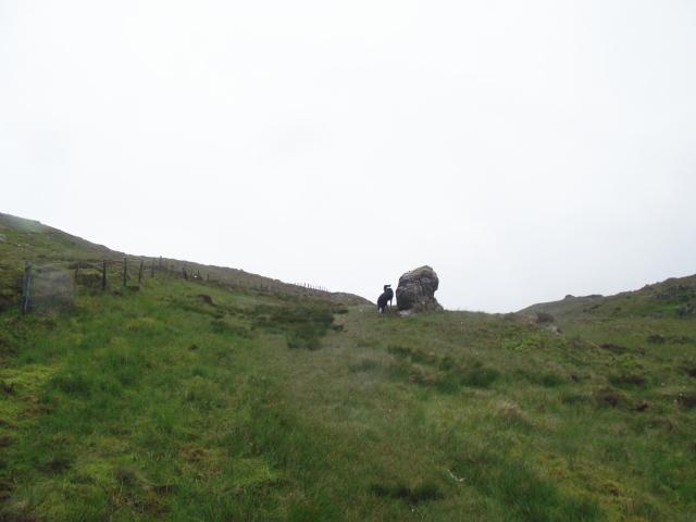 …. and big boulders