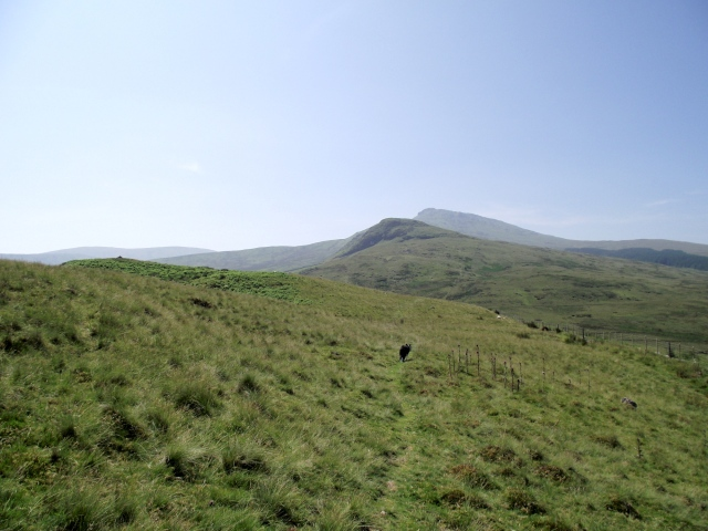 The low part of the ridge stretching out ahead with Aran Benllyn in the distance
