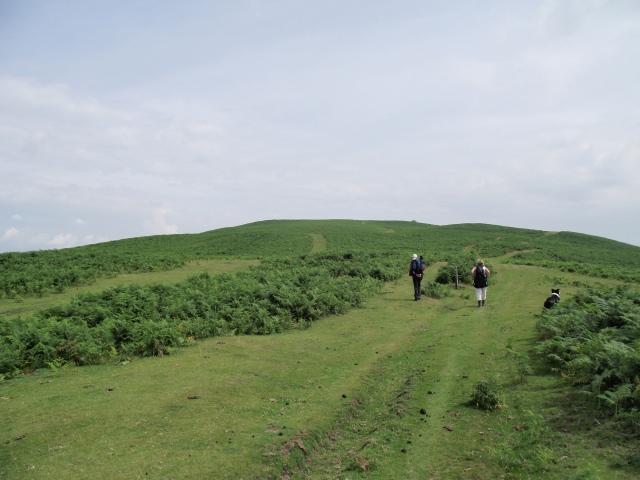 …. onto Hergest Ridge