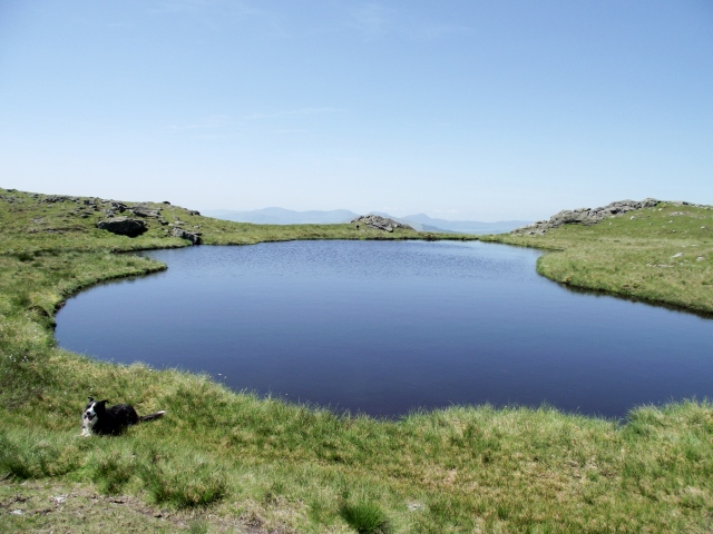 The small lake of Llyn Pen Aran, just below the summit of Aran Benllyn