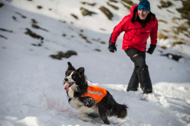 'Mist' search training in Snowdonia (DH)