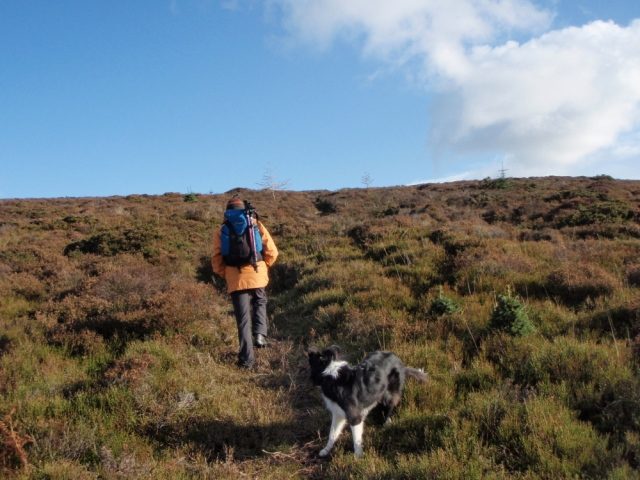 Gaining height on the moor ….