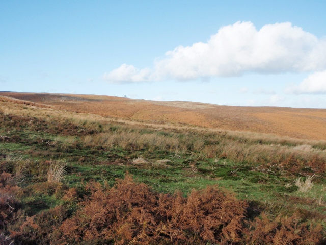 …. or the Pennine Moors?