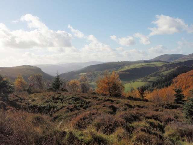 On the moor, looking towards World's End ….