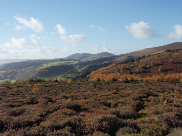…. and looking towards Llantysilio Mountain