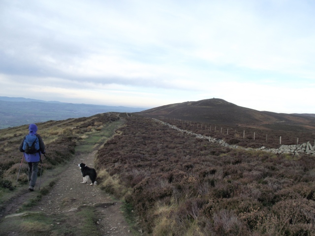 On the ridge towards Moel Llys y Coed
