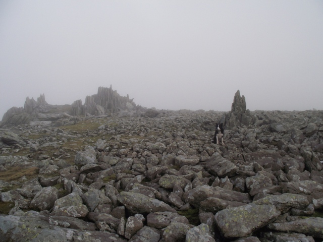 The summit plateau of Glyder Fawr