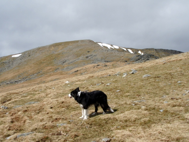 Above the crash site, heading for Carnedd Llewelyn