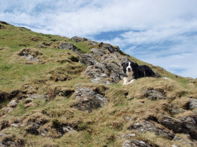 """""""Come on, it's not that steep!"""""""
