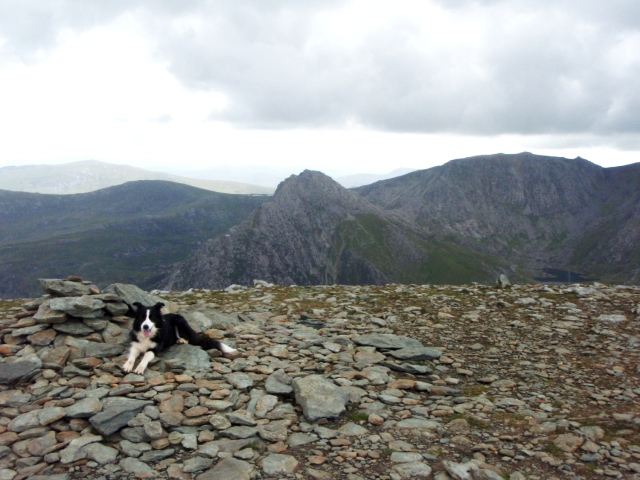 On the summit of Pen yr Ole Wen, with Tryfan (centre) and Glyder Fach behind and right