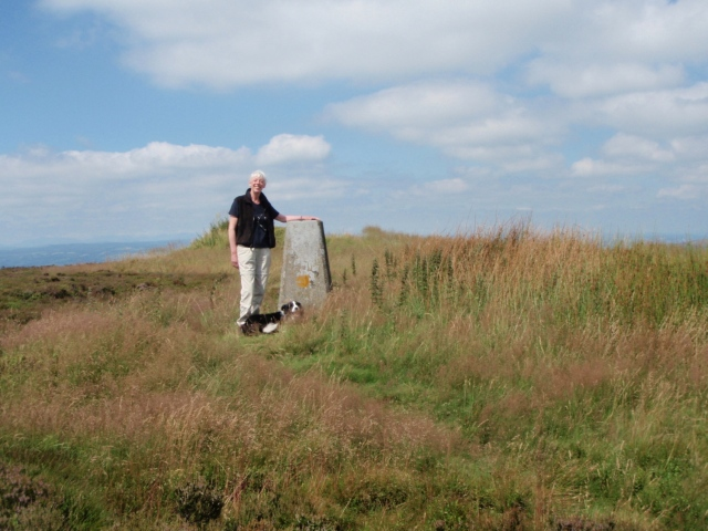 Trig point on Cyrn y Brain at Sir Watkin's Tower