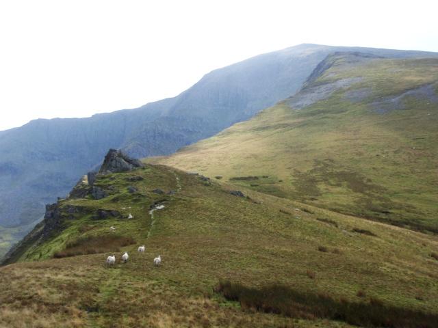 On Mynydd Du, the broad grassy Northwest Ridge of Carnedd Dafydd