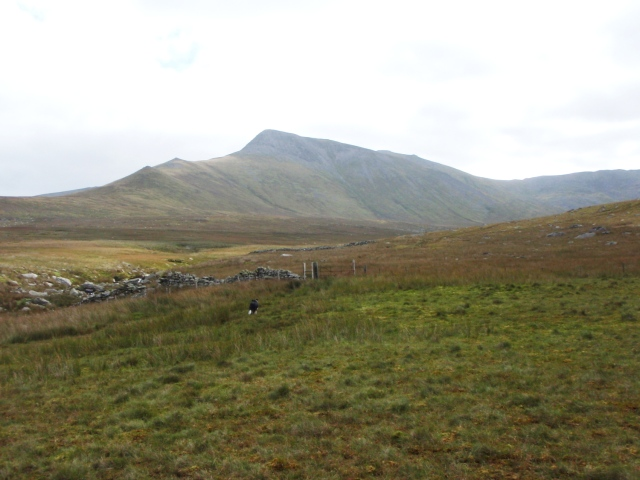 Looking east towards Yr Elen ….