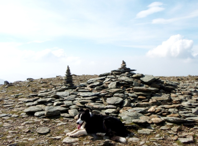 Someone had been having a good time making fun cairns on the summit of Pen yr Ole Wen