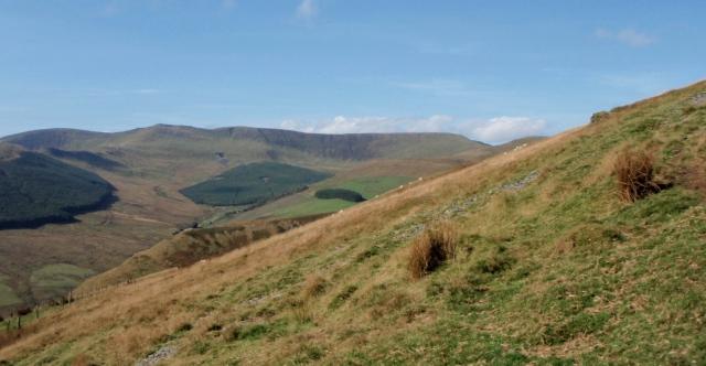 The Berwyn Ridge from Mynydd Tawr