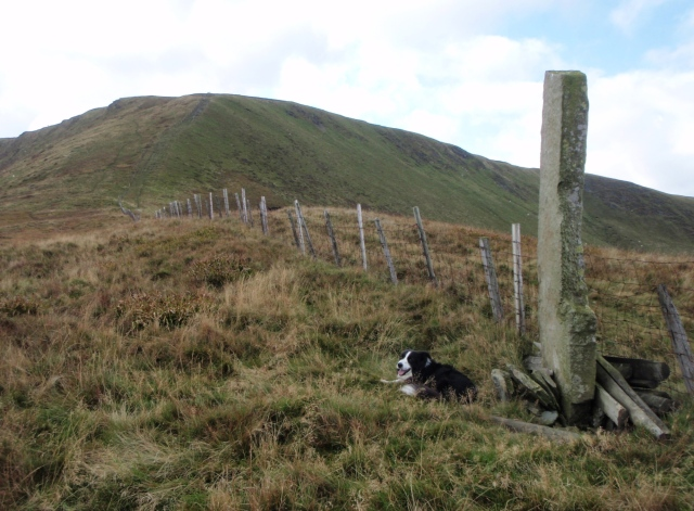 'Mist' at the boundary stone at the bwlch