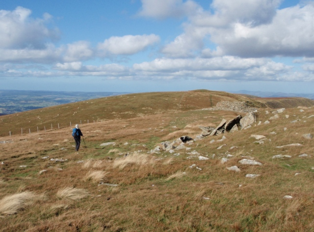 Heading for Cadair Berwyn, with the stone shelter on the right