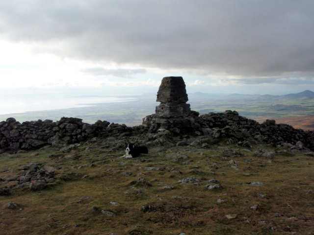 'Mist' at the summit