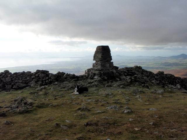'Mist' at the summit
