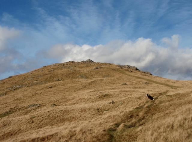 Moel Lefn ahead - the last summit