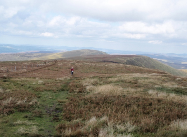 The only other human I saw all day – just below Cadair Berwyn