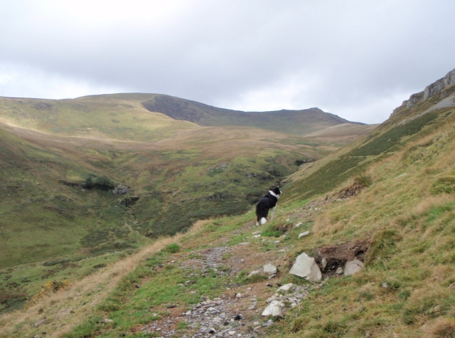 The Berwyn Ridge comes into view with Moel Sych (left) and Cadair Berwyn (right)