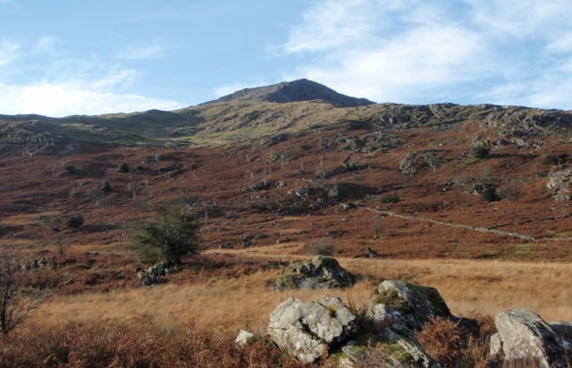 Looking up towards Moel Hebog from near Beddgelert