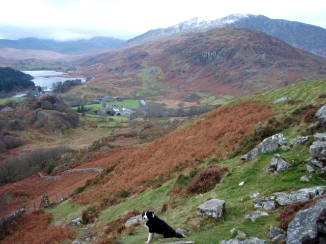 Looking down to Capel Curig