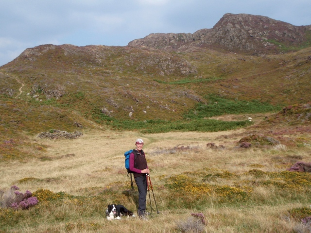 On Mynydd Sygyn – a small undulating plateau