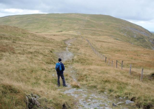 Looking west towards Pen Pumlumon Fawr (752 metres)
