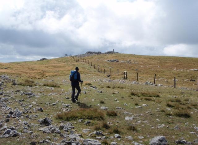 Approaching the summit on Pen Pumlumon Fawr