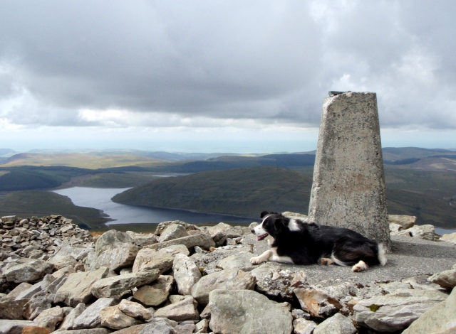 'Mist' at the summit with Nant y Moch Reservoir below