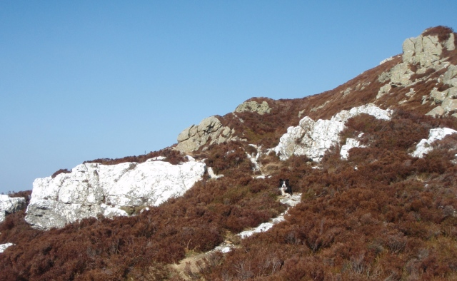 Band of quartz on the way up Creigiau Gleision