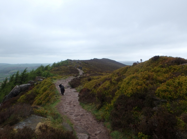 Heading north along The Roaches Edge