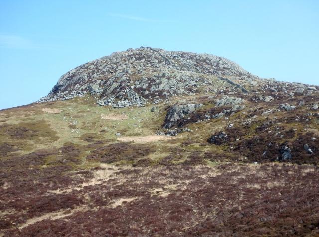 The summit slopes of Tal y Fan ….