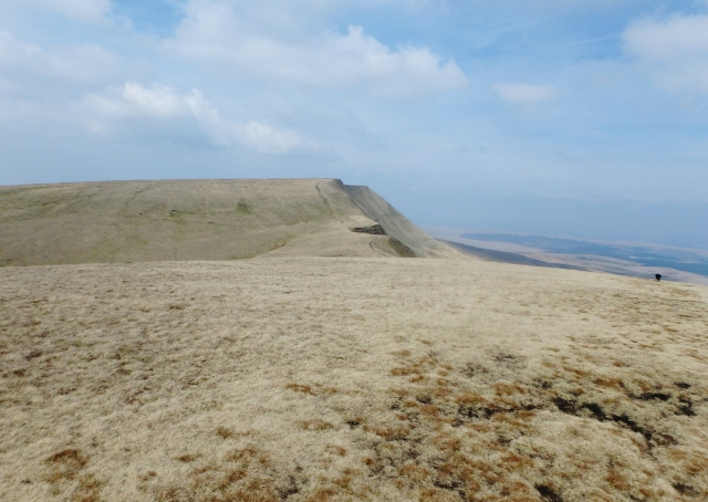 Fan Brycheiniog ahead – our highest point at 802 metres
