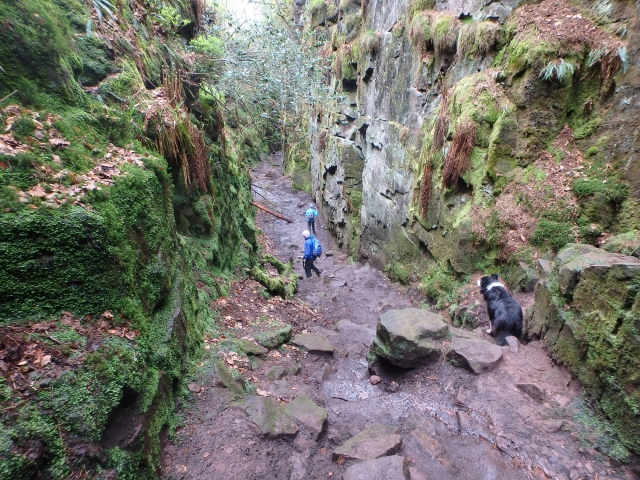 The chasm beyond the entrance chamber