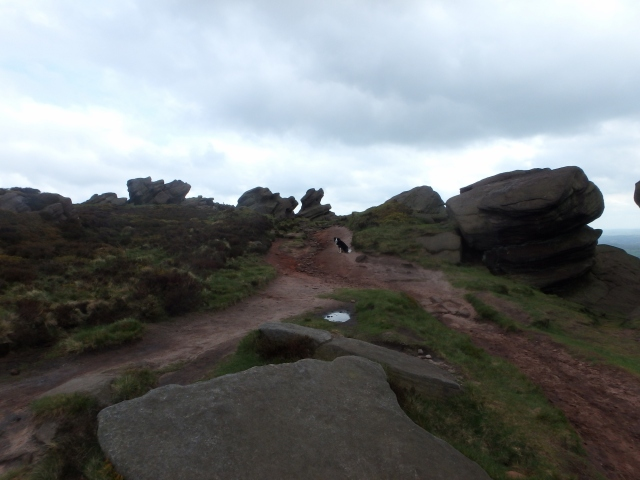 On The Roaches edge again