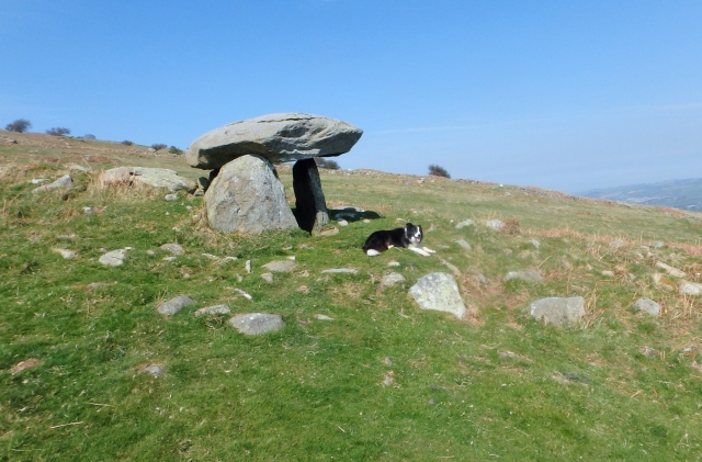 Maen y Bardd Bronze Age burial chamber ….